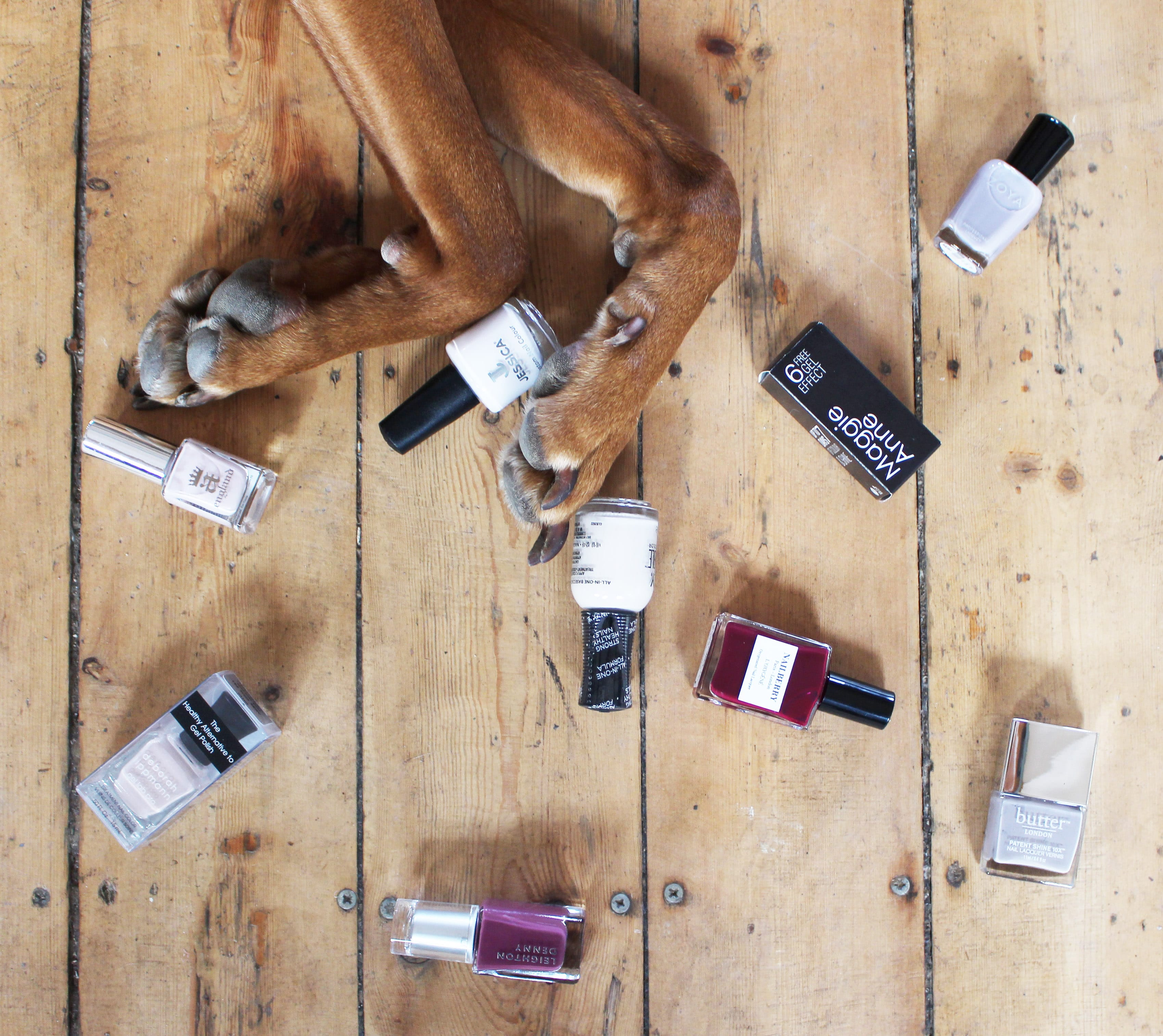 Vegan Friendly Nail Polishes | Blog | Nail Polish Direct